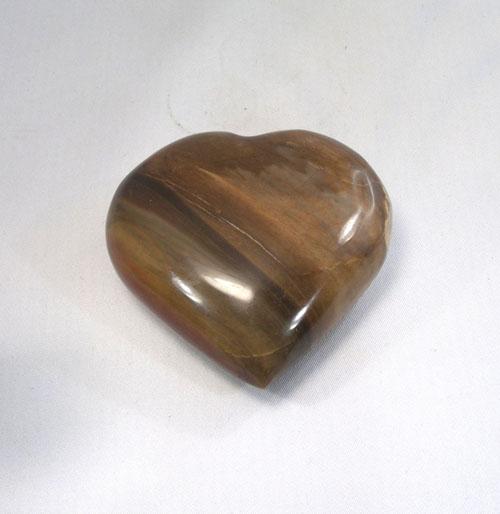 Herz Versteinertes Holz