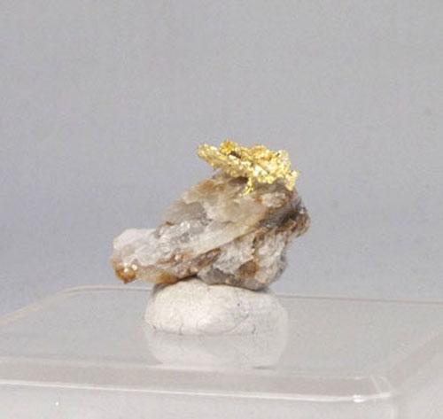 Gold auf Quarz Stufe